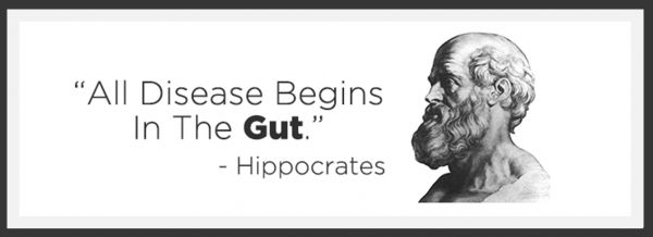 HIPPOCRATES_QUOTE_boxed
